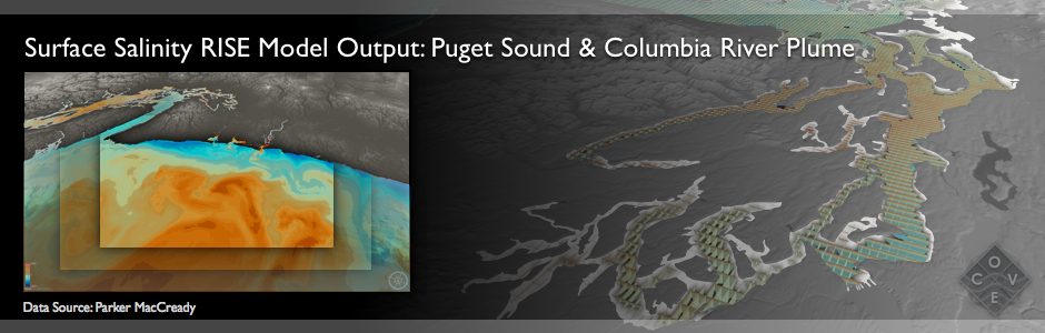 Surface Salinity RISE Model Output: Puget Sound